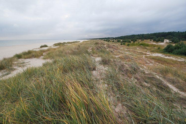 Fischland-Darß