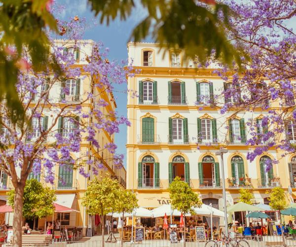 Reisebericht Andalusien: Malaga, Granada, Nerja, Ronda, Alozaina